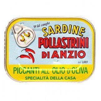 Pollastrini - Sardines in Olive Oil with Chilli